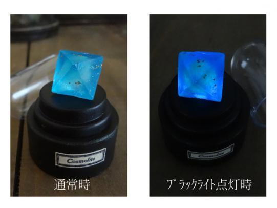 銀河石(Sサイズ) [ブラックライト仕様]